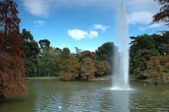 Het park van de herfst Stock Fotografie