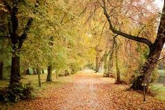 Het park van de herfst in het land van Polen Royalty-vrije Stock Foto's