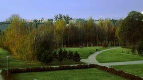 Het park van de de herfststad stock video