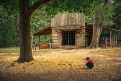 Het Park van de het Slagveldstaat van het prairiebosje Royalty-vrije Stock Foto
