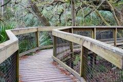 Het park van de Hillsboroughrivier Stock Fotografie