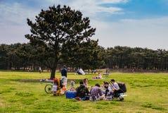 Het Park van de Hitachikust Stock Afbeelding
