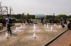Het Park van de Hitachikust Stock Foto