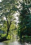 Het park van de landschapsrivier Royalty-vrije Stock Afbeelding