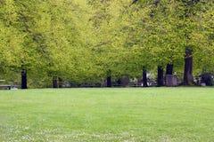 Het Park van de lente stock foto