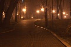 Het park van de nacht Stock Foto