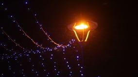 Het Park van de nachtwinter met lantaarns en slingers stock video