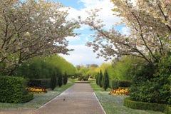 Het park van de regent in Londen Royalty-vrije Stock Afbeeldingen