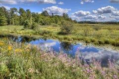 Het Park van de Staat van het McCarthystrand in Noordelijk Minnesota stock afbeelding