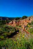 Het Park van de Staat van Caprockcanions in Texas Stock Fotografie