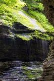 Het Park van de Staat van de Nauwe vallei van Watkins Stock Foto's