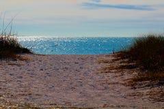 Het park van de staat van het wittebroodswekenstrand, waterview Royalty-vrije Stock Afbeeldingen
