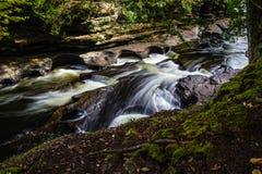 Het Park van de Staat van stekelvarkenbergen Stock Foto