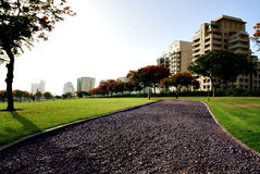 Het park van de stad stock foto