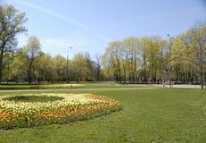 Het park van de stad Stock Foto's