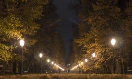 Het park van de stad stock fotografie