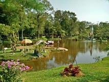 Het park van de stad Stock Afbeeldingen
