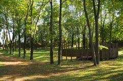 Het park van de stad in de vroege herfst De bladeren beginnen om kleur te veranderen Royalty-vrije Stock Afbeeldingen