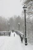 Het park van de stad met de brug en de lantaarns Stock Foto's