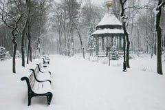 Het park van de stad met winkels in de winter Stock Fotografie