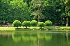 Het park van de stad in Moskou Royalty-vrije Stock Foto's