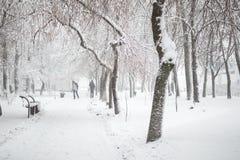 Het park van de stad in de winter Gang en banken met sneeuw wordt behandeld die Het gebied van de stadsrecreatie na sneeuwval Zwa stock fotografie
