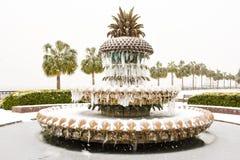 Het Park van de waterkant, Charleston, Sc royalty-vrije stock fotografie