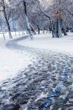Het park van de winter stock foto