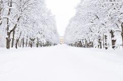 Het park van de winter, Pavlovsk, heilige-Petersburg, Rusland stock afbeelding
