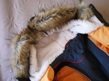 Het Park van de wintermensen Details, close-up, de winterweer en warm jasje royalty-vrije stock foto