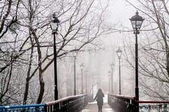 Het park van de de winterstad Stock Afbeelding