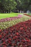 Het Park van de zomer - 1 Royalty-vrije Stock Afbeelding