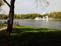 Het park van de zomer Stock Afbeelding