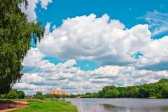 Het park van de zomer bij zonnige dag Stock Afbeelding