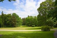Het park van de zomer, bomen Royalty-vrije Stock Foto's