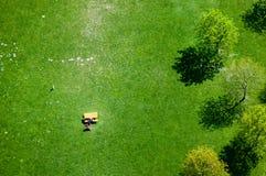 Het Park van Donau, de moderne stad van Wenen oostenrijk Royalty-vrije Stock Foto's