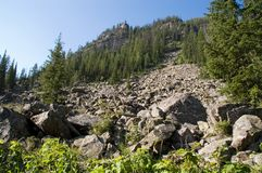 Het Park van Grand Teton royalty-vrije stock foto's