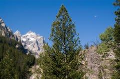 Het Park van Grand Teton stock afbeeldingen