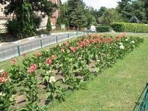Het park van Herastrau in Boekarest 1 royalty-vrije stock foto