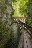 Het Park van het avontuur in Mendlingtal Stock Foto's