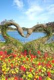 Het Park van het Ecolandthema, Jeju-Eiland Stock Afbeelding