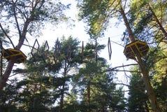 Het park van het kabelavontuur in een landschap van de de zomer bos toneel blauw hemel Het overwinnen van hindernissen en het ber Royalty-vrije Stock Foto's