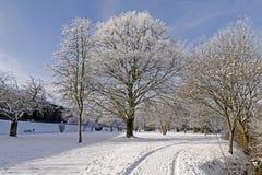 Het park van het kuuroord in de winter, Slechte Rothenfelde, Duitsland Stock Afbeelding