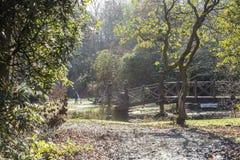Het park van het land Royalty-vrije Stock Foto