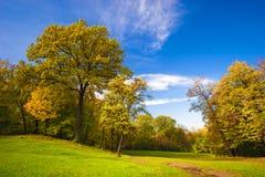 Het park van het landschap Stock Fotografie