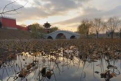 Het park van het landschap Stock Foto