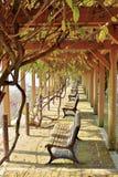Het park van het Tsuyamakasteel met gezichtspuntbanken royalty-vrije stock afbeeldingen