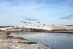 Het park van het zeven Zustersland Royalty-vrije Stock Afbeeldingen