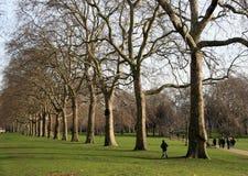 Het park van Hyde Stock Afbeelding