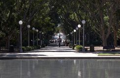 Het Park van Hyde - Sydney Australië Royalty-vrije Stock Afbeeldingen